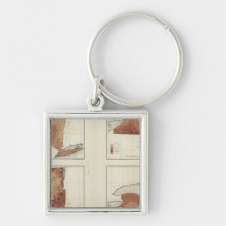 NY rainfall, population, elevation, temperature Silver-Colored Square Key Ring