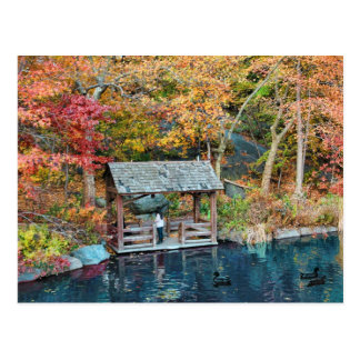 NYC Central Park Autumn, The Lake & Little Dock Postcard