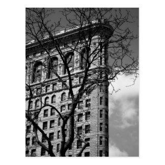 NYC Flat Iron Building Postcard