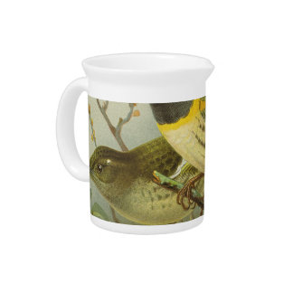 NZ Birds - Stitch Birds Semi-Abstract Pitcher