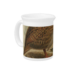 NZ Birds - Weka Semi-Abstract Pitcher