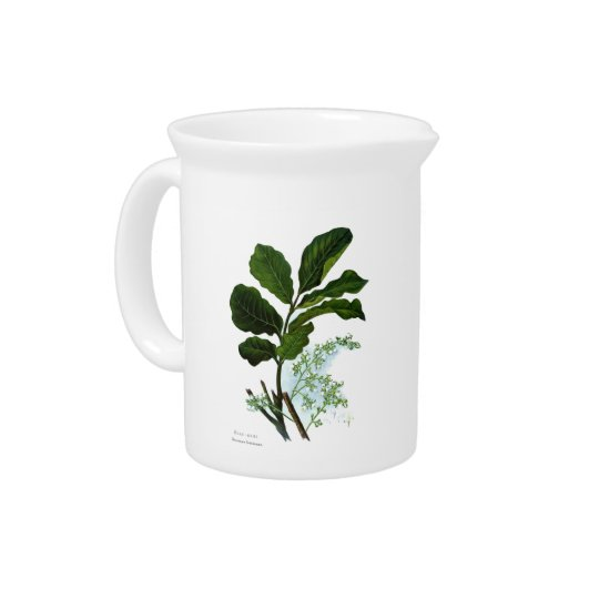NZ Flowers - Kohe Kohe Beverage Pitchers