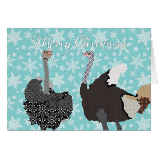 O' Holy Ostrich  Christmas Greeting Card