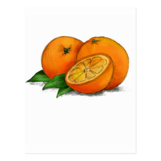 O is for Oranges Postcard