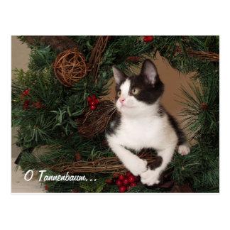 O Tannenbaum Cat Post Card
