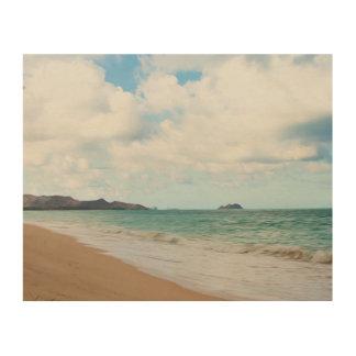Oahu Hawaii Ocean Waves & Beach Wood Wall Art