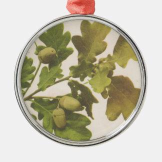 Oak 1907 Silver-Colored round decoration