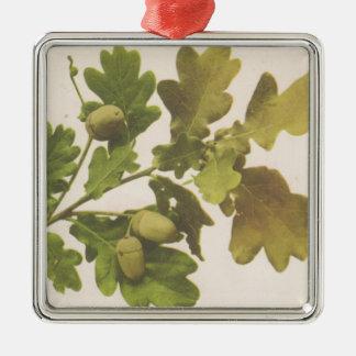 Oak 1907 Silver-Colored square decoration