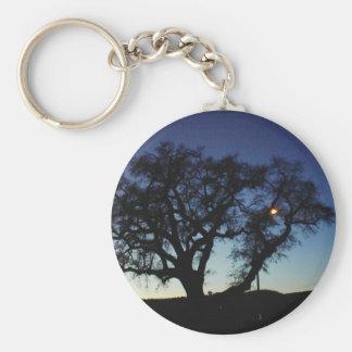 Oak at Dusk Basic Round Button Key Ring