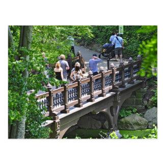 Oak Bridge at Bank Rock Bay, Central Park Postcard
