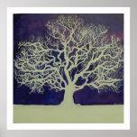 Oak in Winter Poster