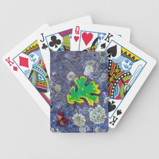 Oak Leaf and Acorns on a Lichen covered rock Bicycle Playing Cards