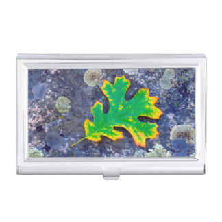 Oak Leaf and Acorns on a Lichen covered rock Business Card Holder