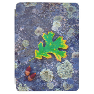 Oak Leaf and Acorns on a Lichen covered rock iPad Air Cover