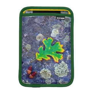 Oak Leaf and Acorns on a Lichen covered rock iPad Mini Sleeve