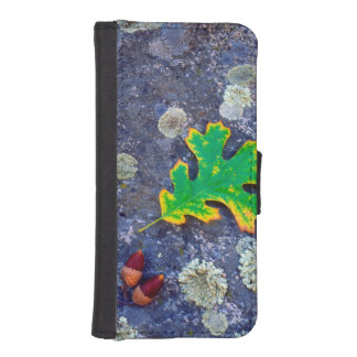 Oak Leaf and Acorns on a Lichen covered rock iPhone SE/5/5s Wallet Case