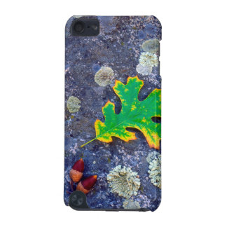 Oak Leaf and Acorns on a Lichen covered rock iPod Touch 5G Cases