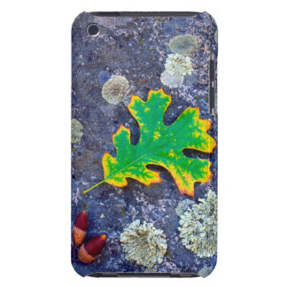 Oak Leaf and Acorns on a Lichen covered rock iPod Touch Case-Mate Case