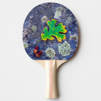 Oak Leaf and Acorns on a Lichen covered rock Ping Pong Paddle