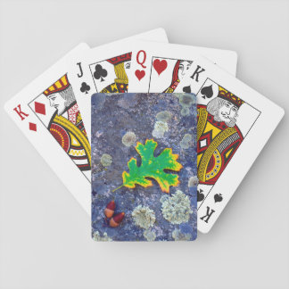 Oak Leaf and Acorns on a Lichen covered rock Playing Cards