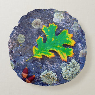 Oak Leaf and Acorns on a Lichen covered rock Round Cushion