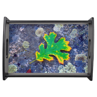 Oak Leaf and Acorns on a Lichen covered rock Serving Tray