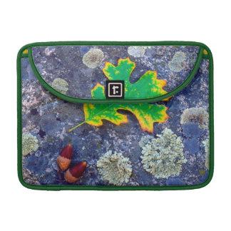 Oak Leaf and Acorns on a Lichen covered rock Sleeve For MacBooks