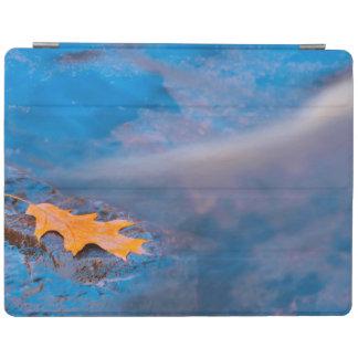 Oak leaf on rock in Rosseau River iPad Cover