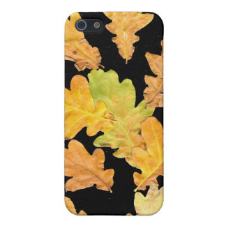 Oak Leaves in Fall on Black Background iPhone 5 Case