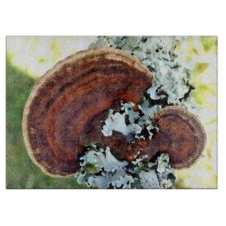 Oak Mazegill Fungus Glass Chopping Board