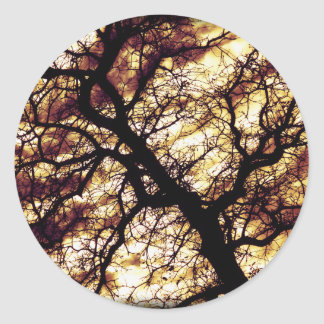 Oak Tree Classic Round Sticker