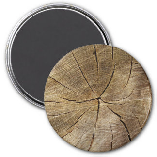 Oak Tree Cross Section Large Round Magnet
