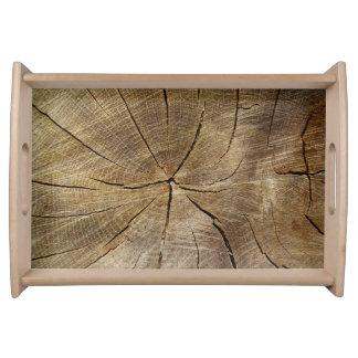 Oak Tree Cross Section Serving Tray