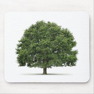 Oak Tree Mouse Mat