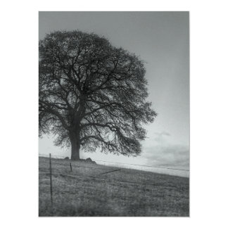 Oak Tree On A Hill 14 Cm X 19 Cm Invitation Card