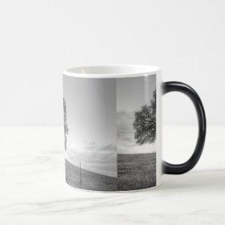 Oak Tree On A Hill Mugs