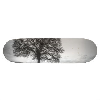 Oak Tree On A Hill Skate Board