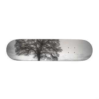 Oak Tree On A Hill Skate Board Deck