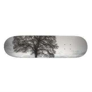 Oak Tree On A Hill Skateboard