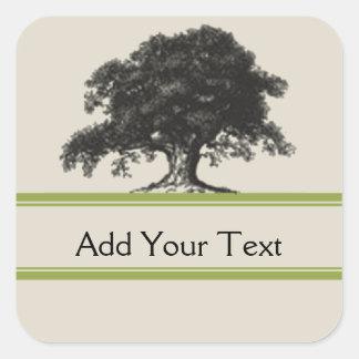 Oak Tree Plantation in Green Square Sticker