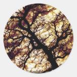 Oak Tree Round Sticker