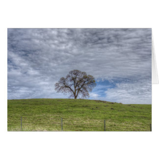 Oak Tree Solitaire Greeting Cards