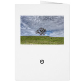 Oak Tree Solitaire Note Card