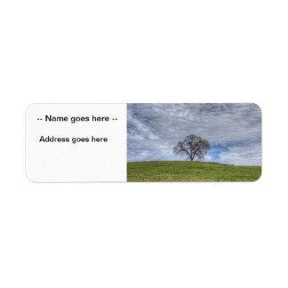 Oak Tree Solitaire Return Address Label