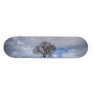 Oak Tree Solitaire Skate Deck