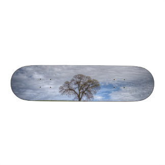 Oak Tree Solitaire Skate Board Deck