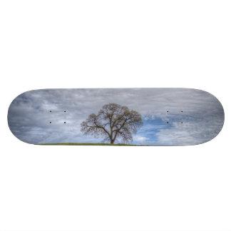 Oak Tree Solitaire Skate Decks