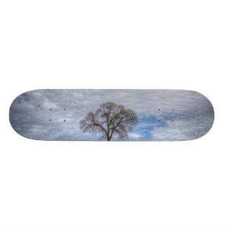 Oak Tree Solitaire Custom Skate Board