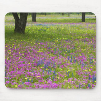 Oak Trees with field of Phlox, Blue Bonnets Mouse Mat