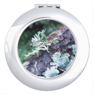 Oakmoss Lichen On Branch Vanity Mirror